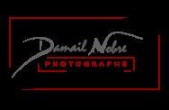 Logo gris rouge